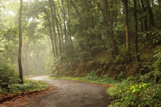 1.cycling-in-western-ghats-misty-roads