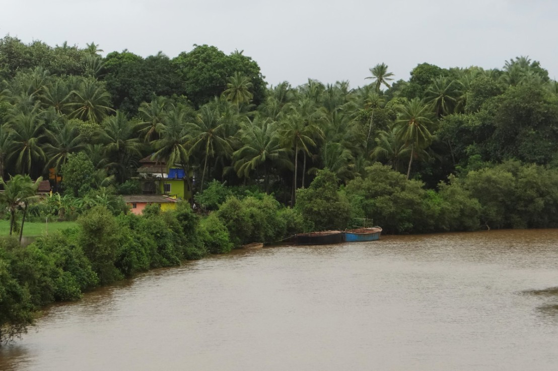 western ghat